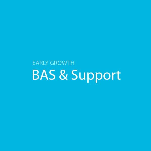 BAS & IAS Lodgement
